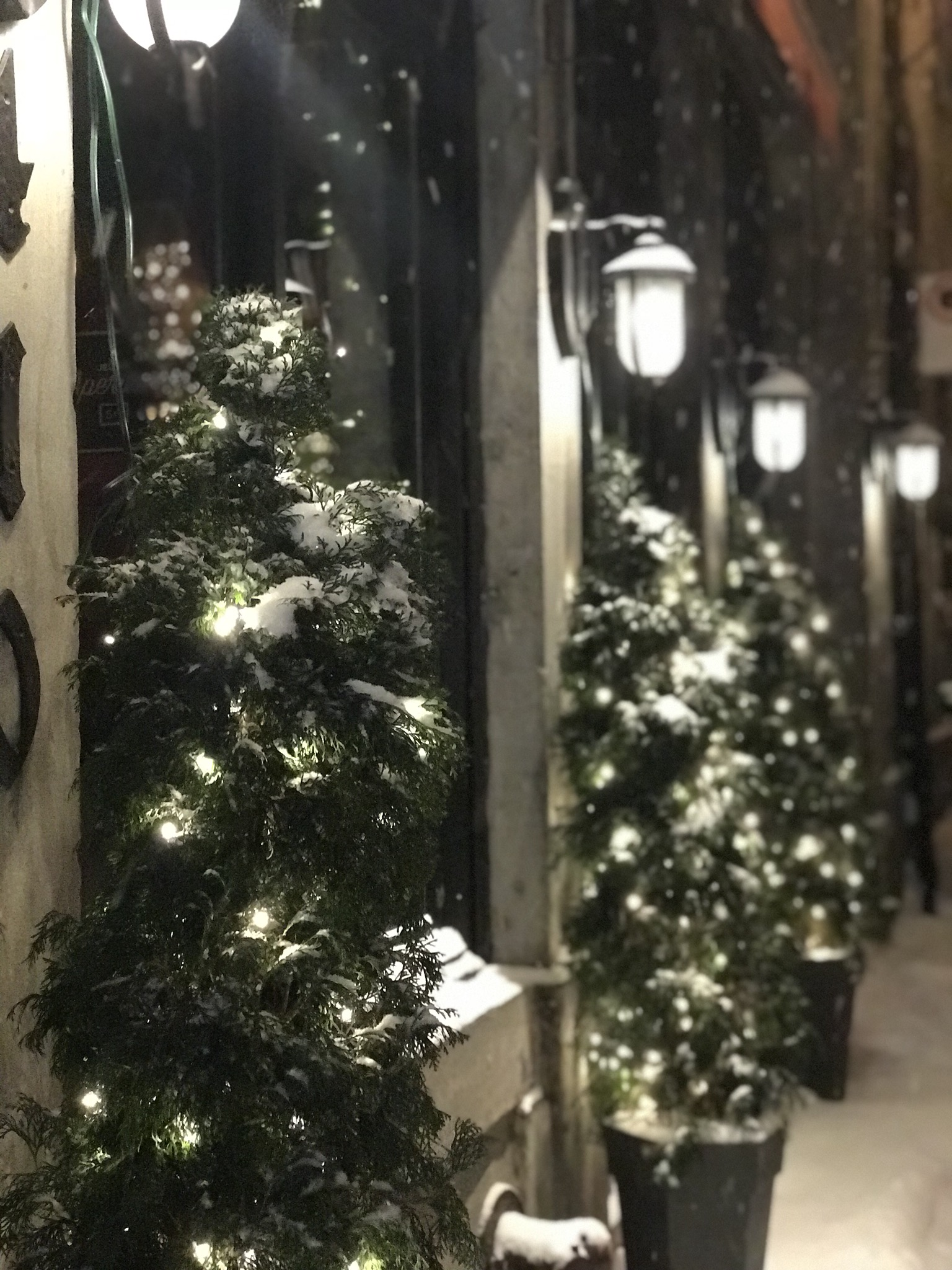 Magical Christmas Vacation in Old Montréal
